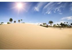 美丽的沙漠景色