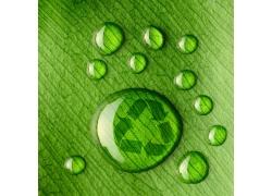 露珠与环保标识
