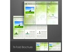 绿色三折页模板图片