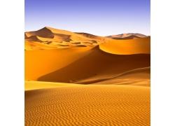 沙漠沙丘风景