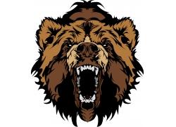 卡通棕熊插画图片