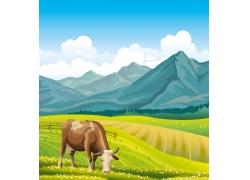 牧场上的卡通牛图片