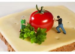 奶酪番茄与3D小人