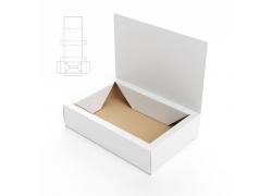 包装纸盒效果图