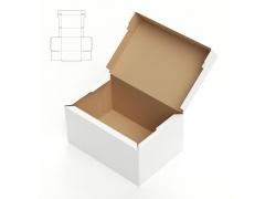 盒子效果图与平面图