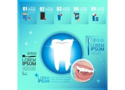 健康牙齿图表