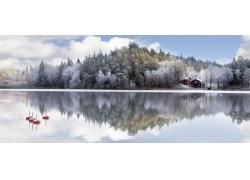 美丽的雪景摄影图片