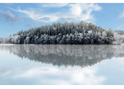 倒映在水面的雪后树木