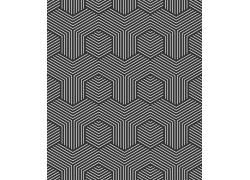 黑白条纹六边形无缝背景