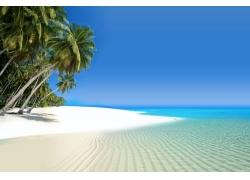 椰树沙滩蓝天风景