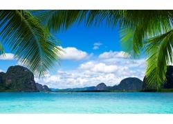 蓝天白云椰树风景