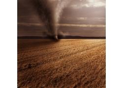 田园刮起的龙卷风