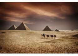埃及金字塔风景