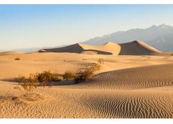 美丽荒漠风景摄影