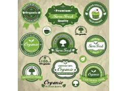 绿色环保标志设计