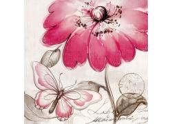 蝴蝶鲜花邮戳图片