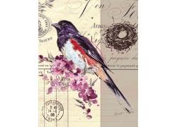 邮戳与小鸟插画图片
