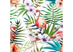 火烈鸟花卉背景