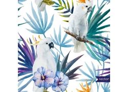 水彩鹦鹉鲜花插画