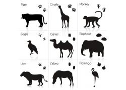 长胫鹿骆驼等动物剪影图片