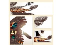 羽毛横幅卡片背景