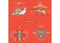 矢量动物插图图片
