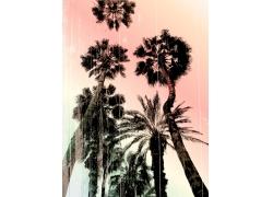 划痕椰子树印花图案