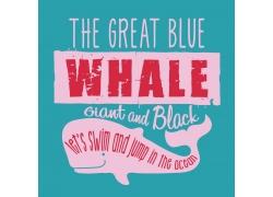 鲨鱼英文字母印花图案