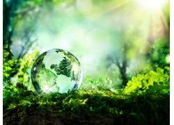 草地上的水晶地球