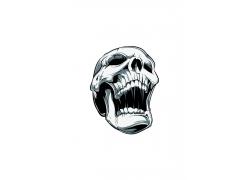 骷髅插画T恤印花设计