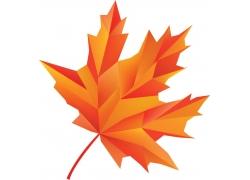 秋天枫叶标志