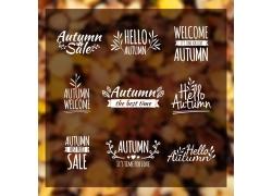 秋天英文字母植物叶子标志