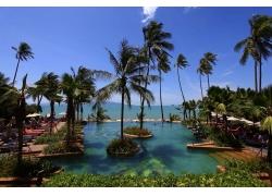 美丽的海边泳池图片