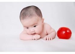 红球可家宝宝