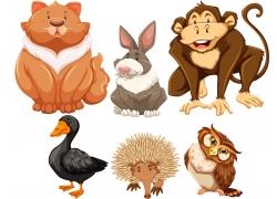 卡通动物插图图片