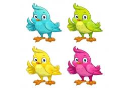 彩色卡通小鸟图片