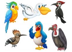 卡通鸟类插画图片