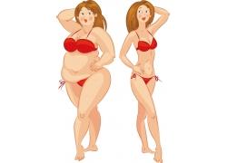 穿比基尼的胖瘦美女插画图片