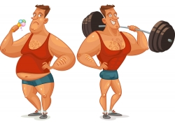 胖瘦人物对比插画图片