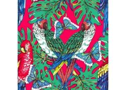 水彩鹦鹉蝴蝶花朵图案