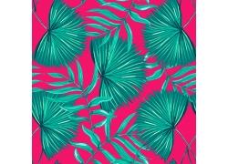 热带植物图案