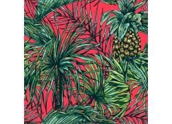 热带植物菠萝图案