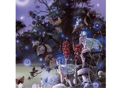 丛林仙子插画图片