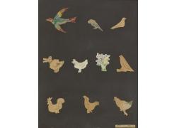 鸟类家禽动物绘画图片