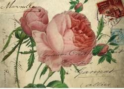 玫瑰花邮戳装饰画图片