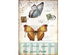 蝴蝶与邮票邮戳图片