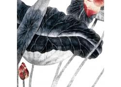 水墨荷花装饰画图片