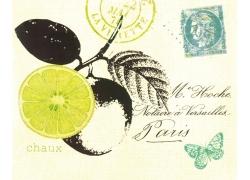 邮戳柠檬蝴蝶装饰画图片
