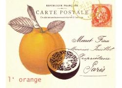 橙子邮戳装饰画图片