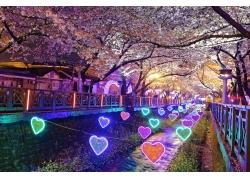 樱花与爱心灯饰